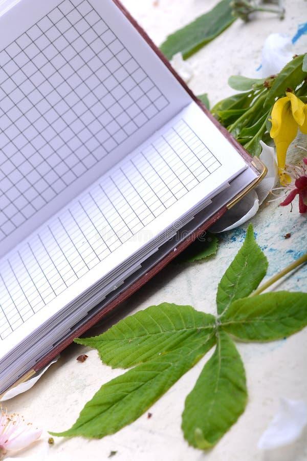 Caderno do papel vazio no fundo branco do vintage com elementos scrapbooking fotografia de stock royalty free