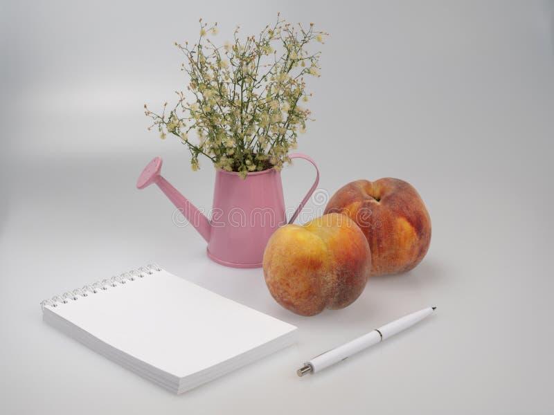Caderno e pena, pêssegos e flores em uma lata molhando imagem de stock royalty free