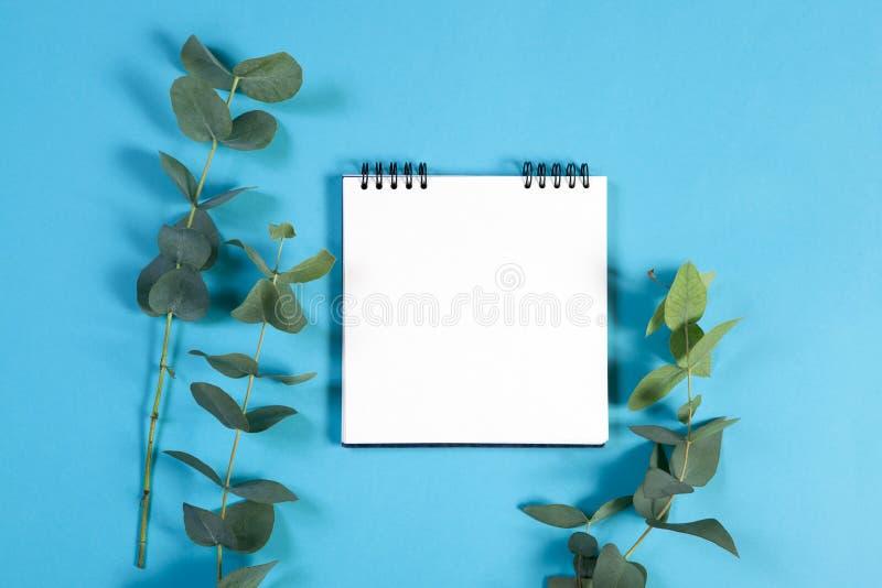 caderno nas molas com um eucalipto em um fundo azul com um espaço vazio para notas imagens de stock royalty free