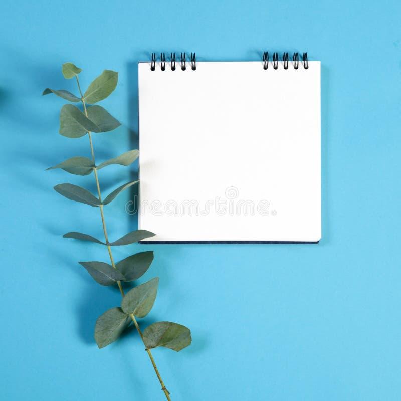 caderno nas molas com um eucalipto em um fundo azul com um espaço vazio para notas foto de stock