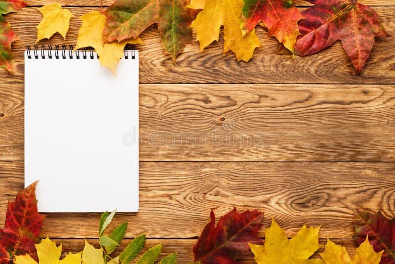 Caderno vazio no fundo de madeira com as folhas vermelhas e amarelas imagem de stock