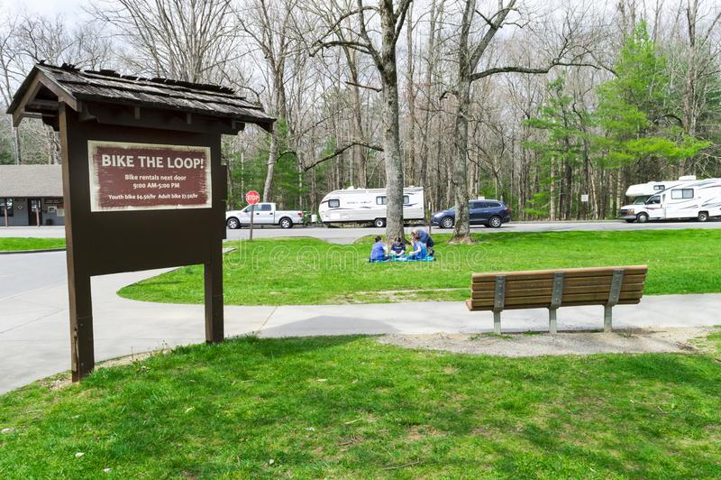 Cades小海湾自行车圈的早期的春天访客在大烟雾弥漫的山脉国家公园 免版税库存照片