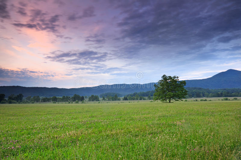 Cades cove at sunset royalty free stock photos
