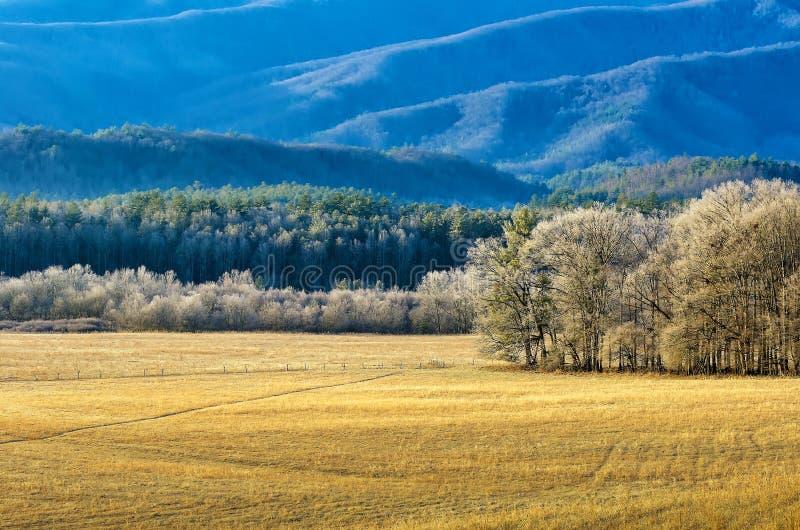 Cades zatoczka, zima, Great Smoky Mountains zdjęcia stock