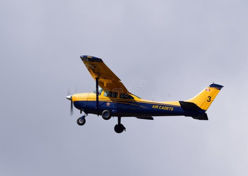 Cadete canadenses reais do ar em voo foto de stock royalty free