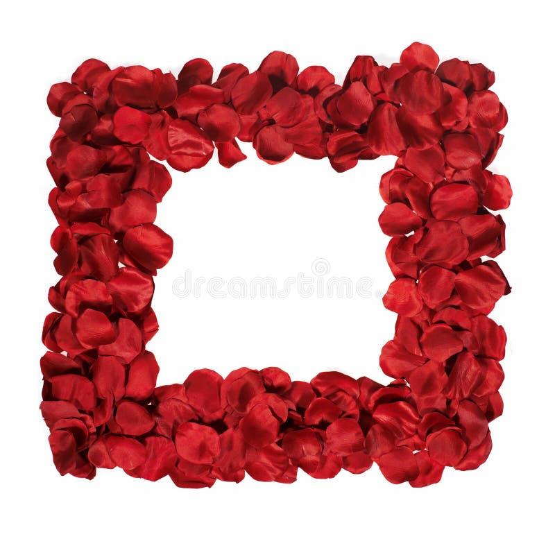 Cadre avec des pétales des roses rouges photos libres de droits