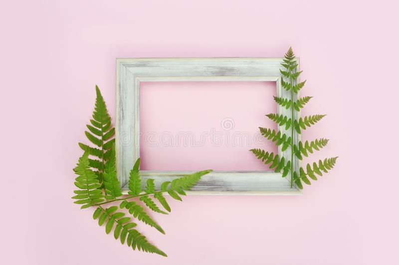 Cadre blanc en bois de photo et feuilles vertes sur le fond rose doux Configuration plate, vue sup?rieure, l'espace de copie Cart image stock