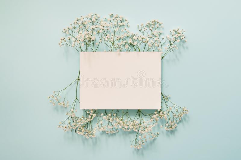 Cadre blanc floral photo stock