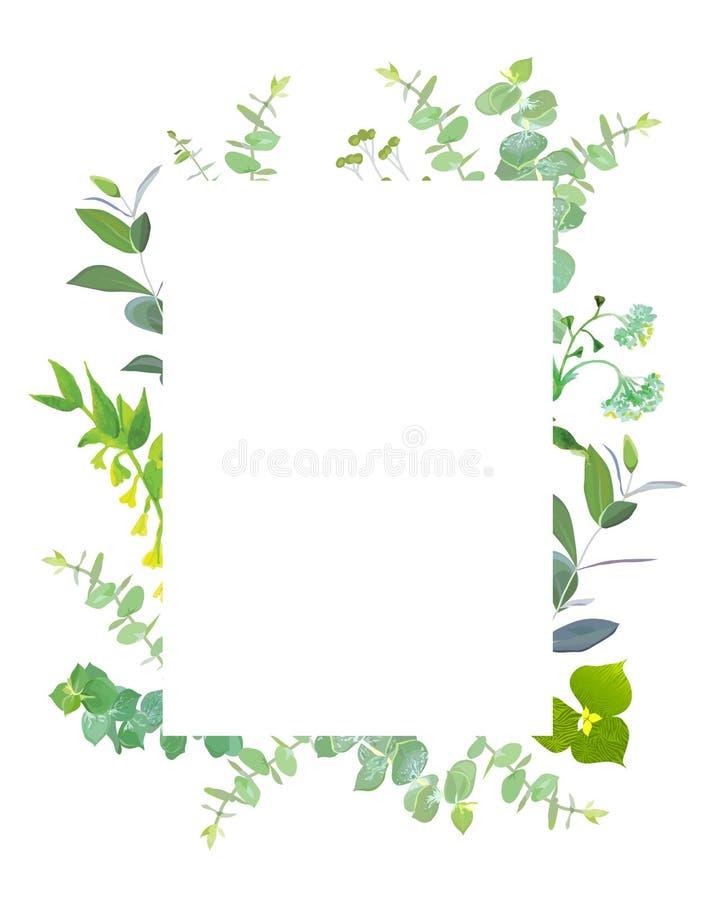 Cadre botanique carré de conception de vecteur illustration de vecteur