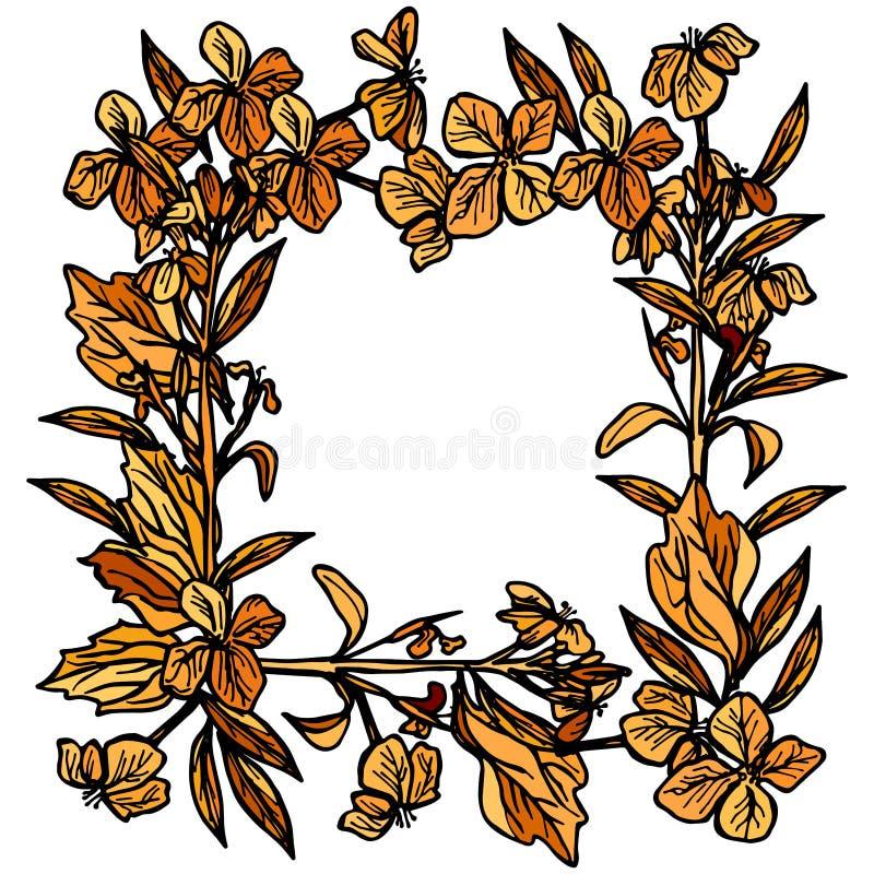 Cadre carré d'automne fait de branches et fleurs, feuilles et fleurs, croquis, orange et noir sur le fond blanc Vecteur illustration stock