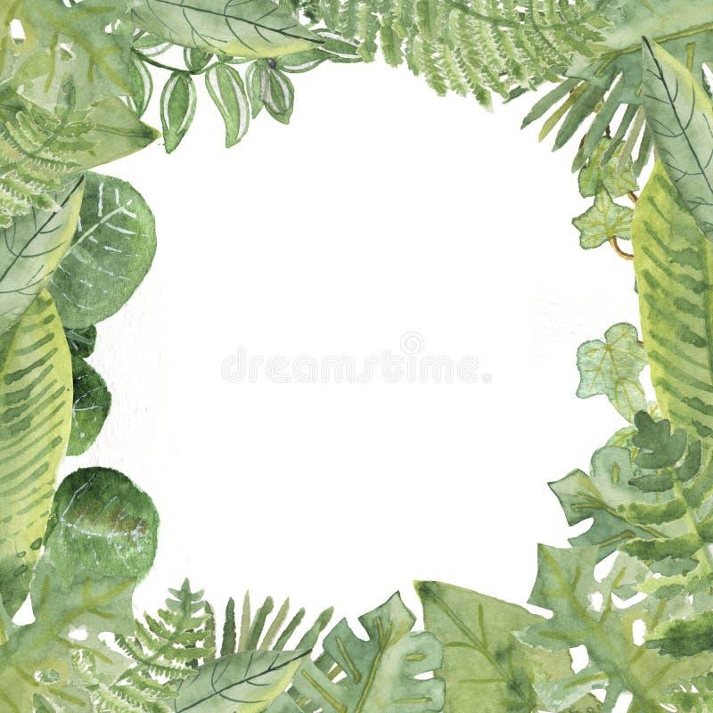 Cadre carré de frontière de feuilles tropicales d'aquarelle illustration libre de droits