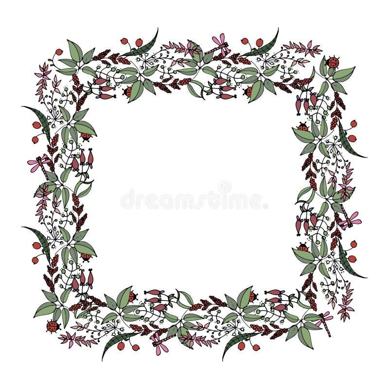 Cadre carré des plantes sauvages et des fleurs dans le style de griffonnage illustration de vecteur