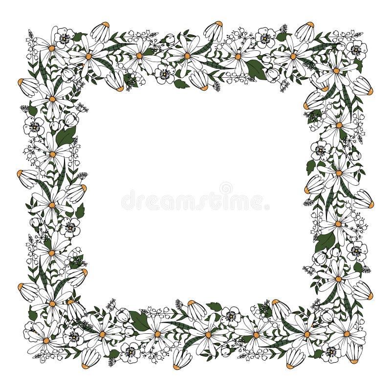 Cadre carré des plantes sauvages et des fleurs dans le style de griffonnage illustration libre de droits