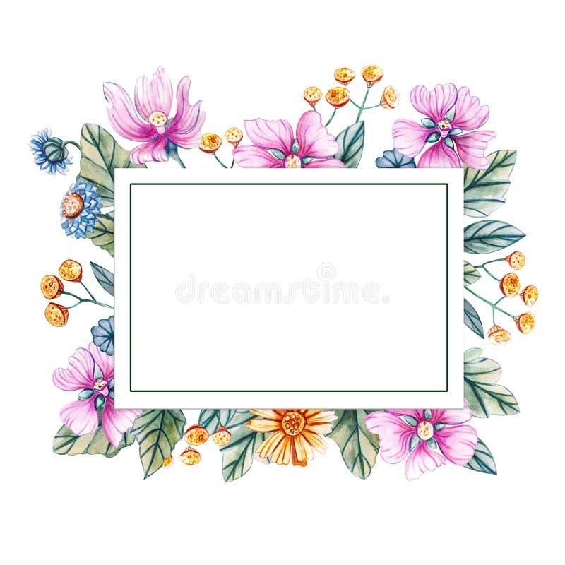 Cadre carré floral des wildflowers d'aquarelle Il y a un endroit pour le texte illustration de vecteur