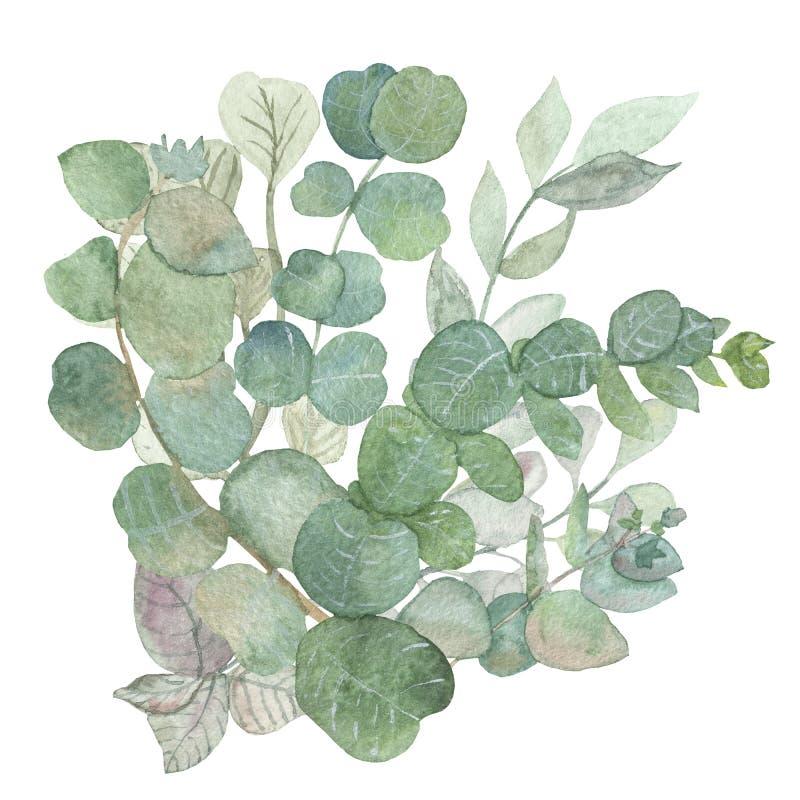 Cadre carré peint à la main d'aquarelle avec des feuilles et des branches d'eucalyptus de dollar en argent illustration stock