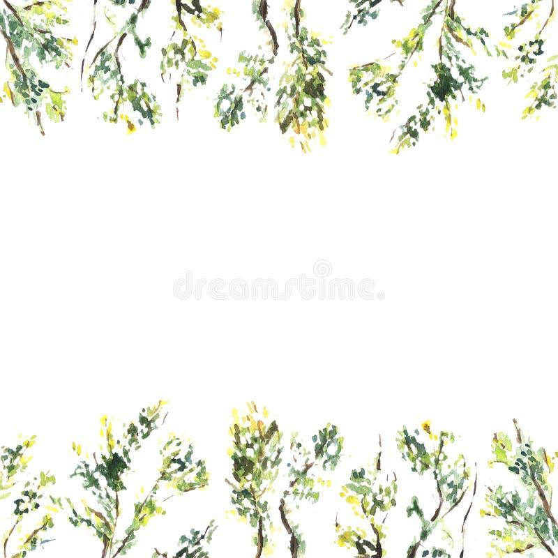 Cadre carré pour aquarelle des brunchs et des feuilles illustration libre de droits
