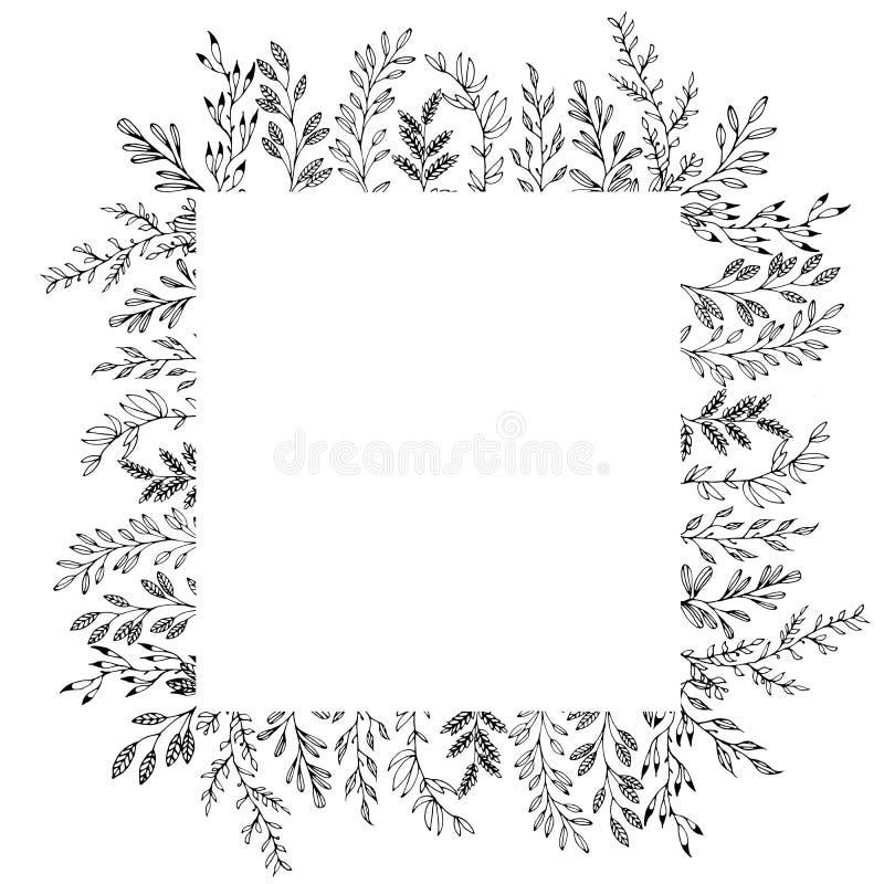 Cadre carré tiré par la main floral des éléments de botanique illustration libre de droits
