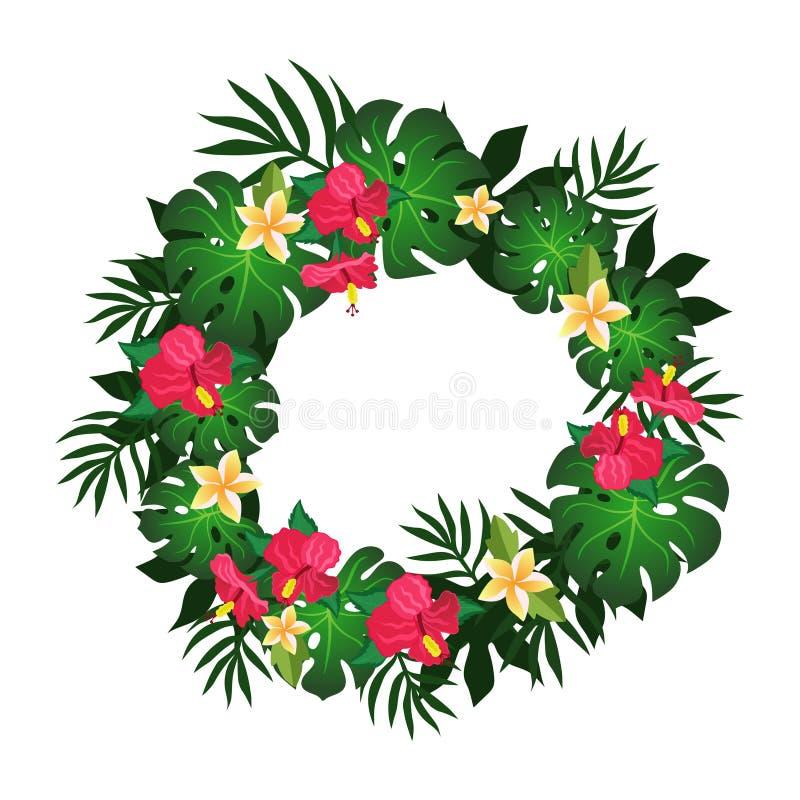 Cadre circulaire d'image tropicale de vecteur de conception d'élément de fleurs et de plantes illustration libre de droits