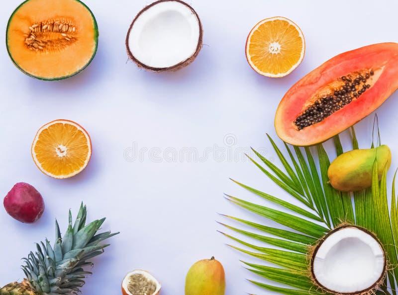 Cadre créatif avec les fruits tropicaux et palmette sur le fond blanc, photos libres de droits