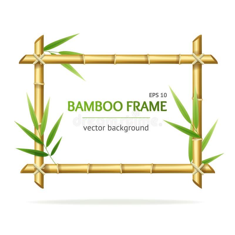 Cadre détaillé réaliste de pousses du bambou 3d Vecteur illustration libre de droits