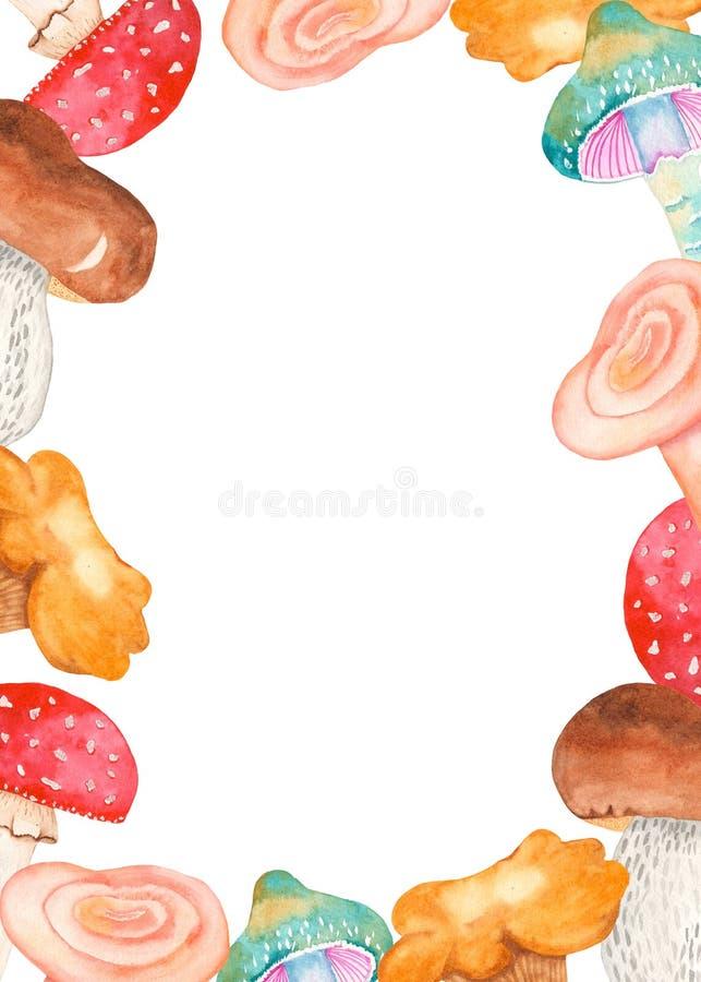 Cadre d'aquarelle avec des champignons : agaric de mouche, blanc, chanterelles, taches de rousseur illustration stock