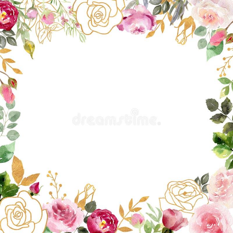 Cadre d'aquarelle avec des roses et des éléments d'or photos libres de droits