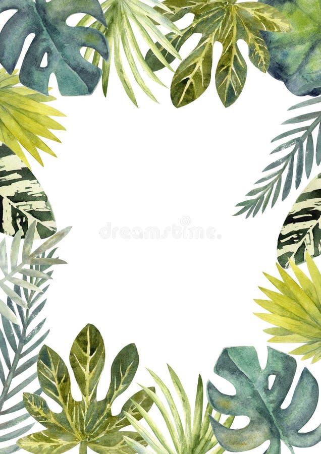 Cadre d'aquarelle des feuilles tropicales colorées Pour des invitations, des cartes de voeux et des papiers peints illustration libre de droits