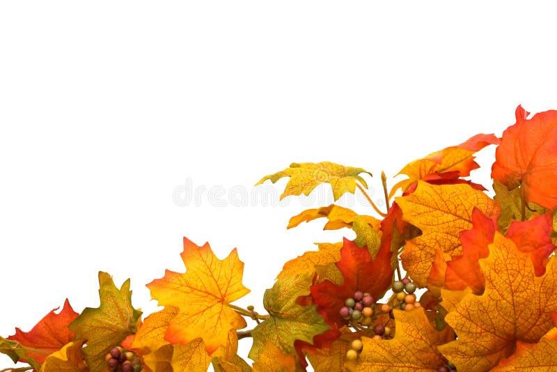 Cadre d'automne images libres de droits