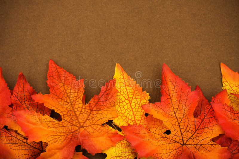Cadre d'automne photos libres de droits