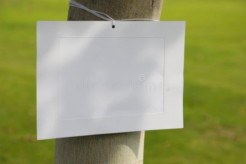 Cadre d'image sur un tronc d'arbre photos stock