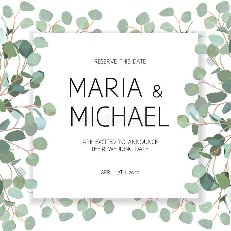 Cadre de bannière de conception de vecteur de place d'eucalyptus de mariage illustration stock