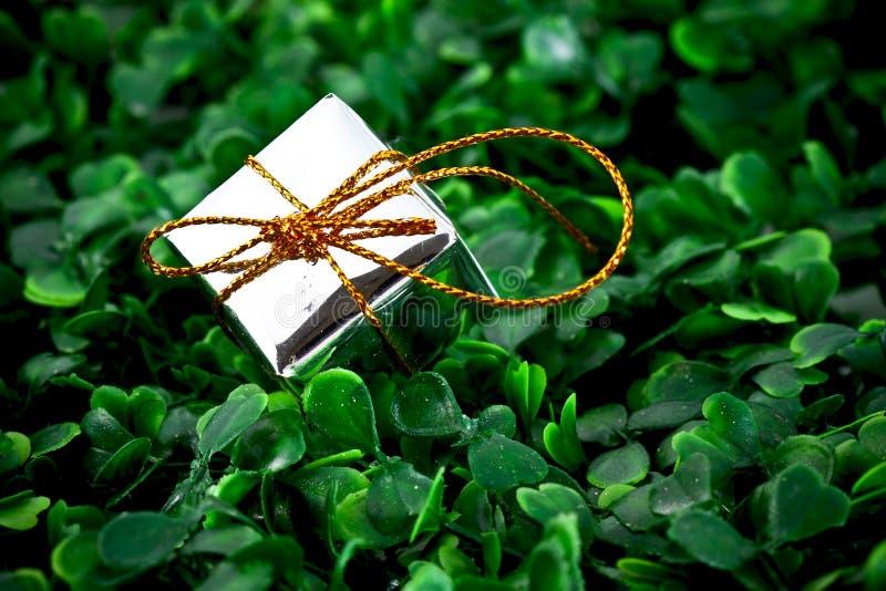 Cadre de cadeau à l'arrière-plan herbeux image libre de droits