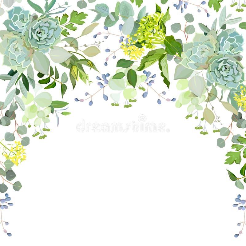 Cadre de fines herbes de guirlande de demi-cercle sur le fond blanc illustration de vecteur