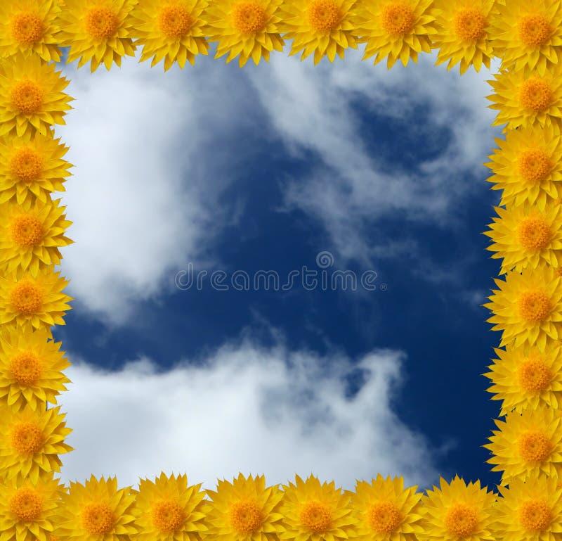 Cadre de fleur illustration libre de droits