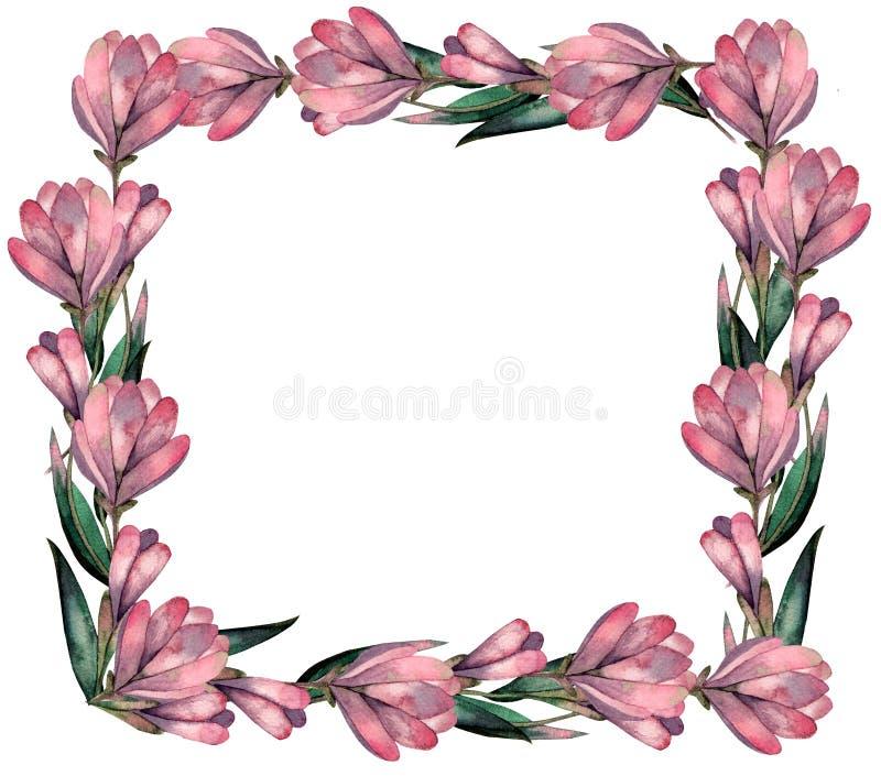 Cadre de fleurs de magnolia d'aquarelle illustration de vecteur