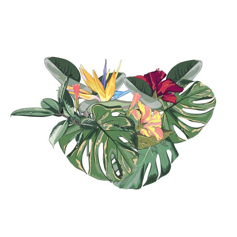 Cadre de frontière de forme de coeur des feuilles tropicales exotiques vert clair de palmier et de monstera de forêt tropicale de illustration libre de droits
