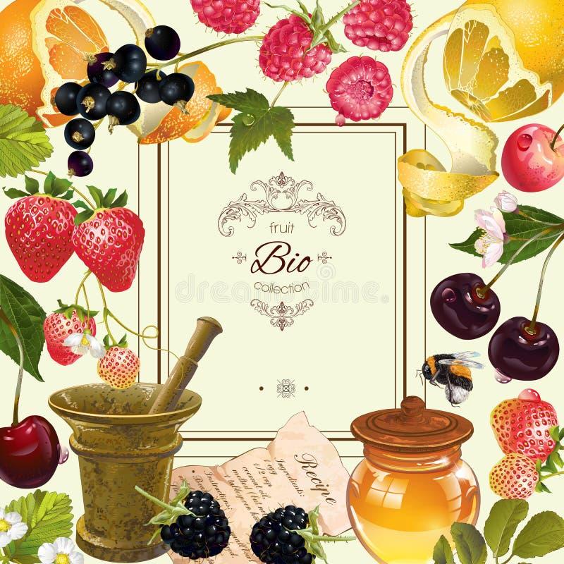 Cadre de fruit et de baie illustration libre de droits