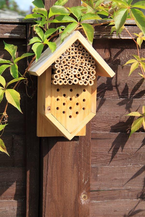 Cadre de maison d'insecte photo libre de droits