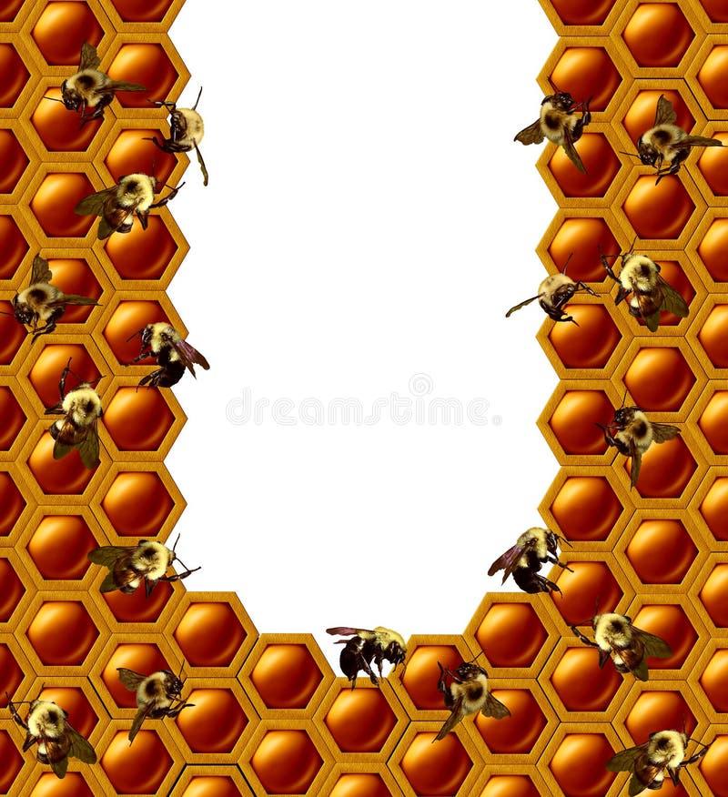 Cadre de nid d'abeilles de ruche illustration libre de droits