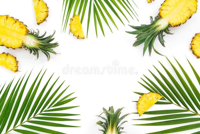 Cadre de nourriture des fruits et des palmettes d'ananas sur le fond blanc Configuration plate photos libres de droits