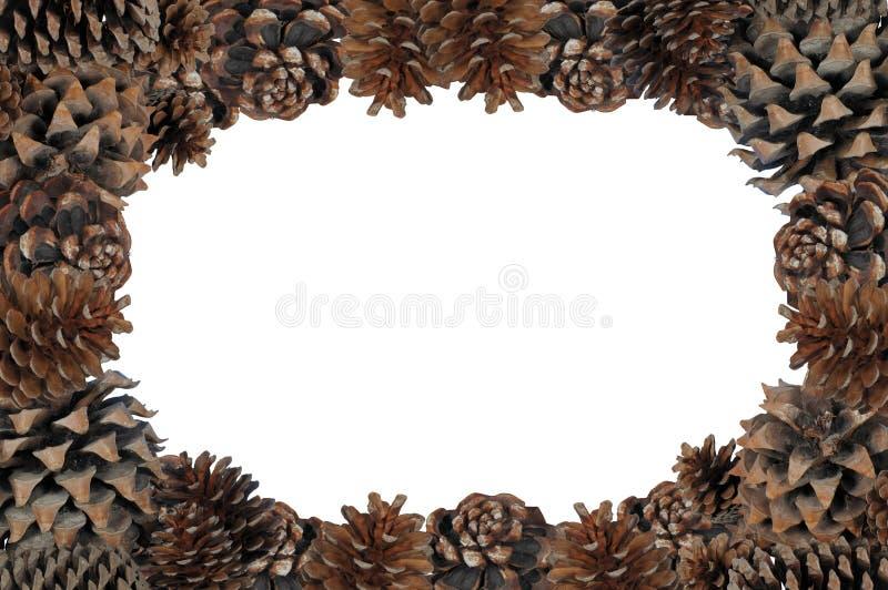 Cadre de page de Pinecone. images libres de droits