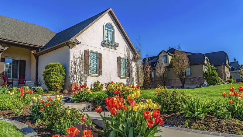 Cadre de panorama jaune et tulipes oranges rayant une voie qui mène à l'entrée d'une maison images stock