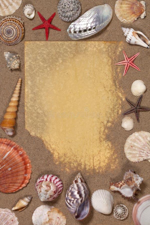 Cadre de Seashell - l'espace pour le texte photo stock