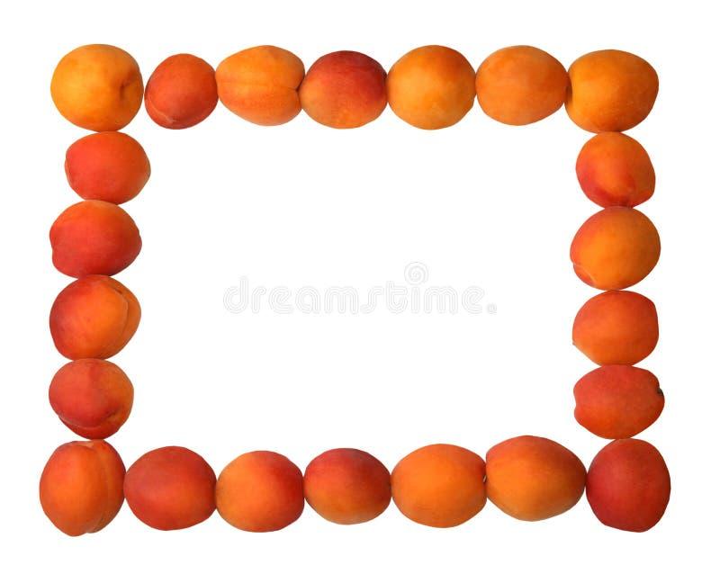 Cadre de tableau fabriqué à partir de différents fruits photographie stock
