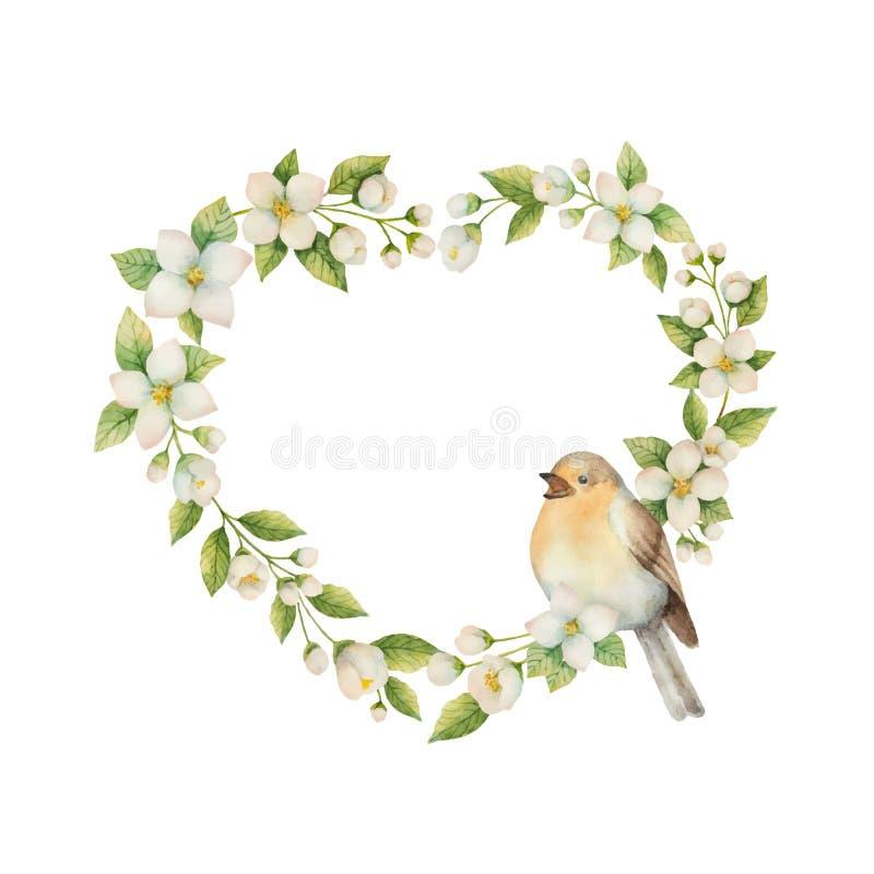 Cadre de vecteur d'aquarelle sous forme de coeur avec l'oiseau et le jasmin de fleurs d'isolement sur un fond blanc illustration stock