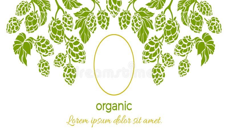 Cadre de vecteur d'houblon Modèle vert de branche, feuilles, cône illustration libre de droits