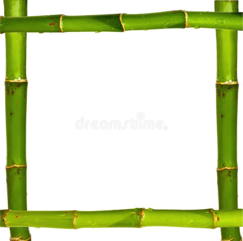 Cadre en bambou fait de tiges d'isolement sur le blanc images libres de droits