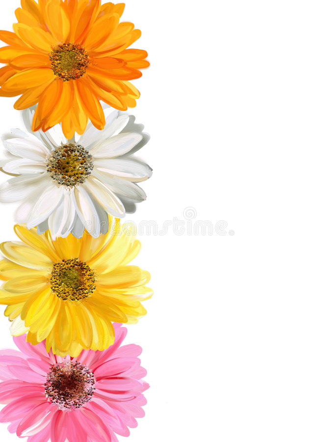 Cadre floral photo stock