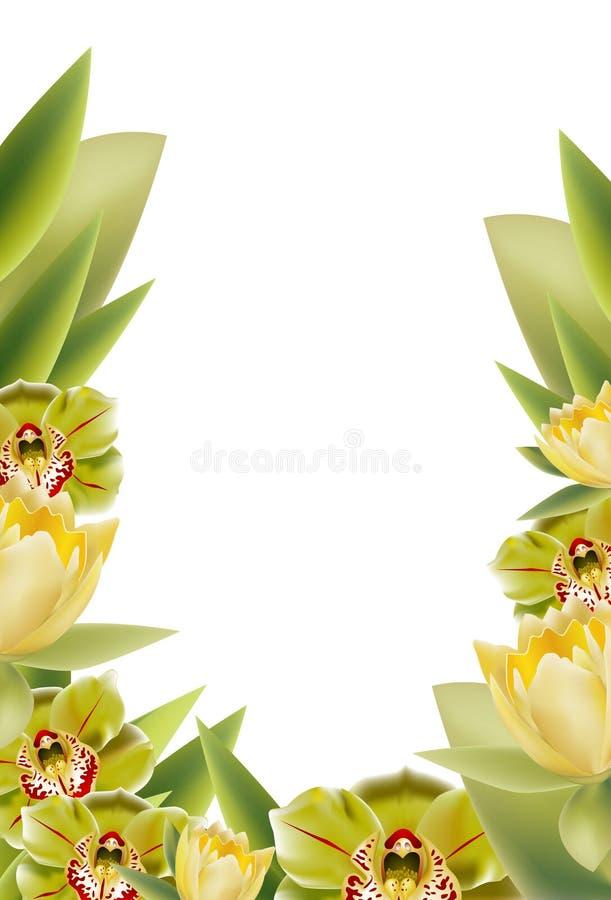 Cadre floral illustration stock