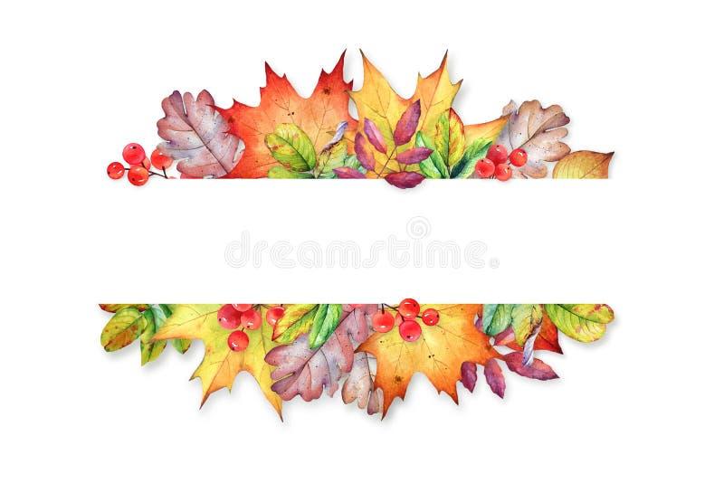 Cadre floral avec des feuilles et des baies d'automne d'aquarelle illustration libre de droits
